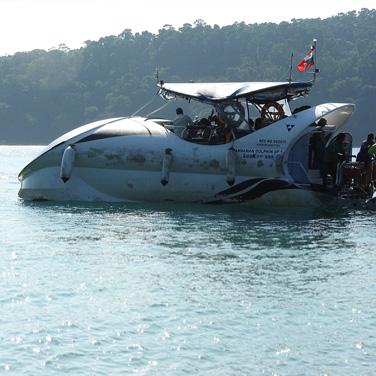 Dolphin boat ride